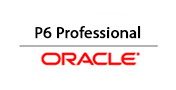 Oracle P6 Professional
