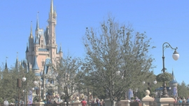 Disneyworld-magic-kingdom